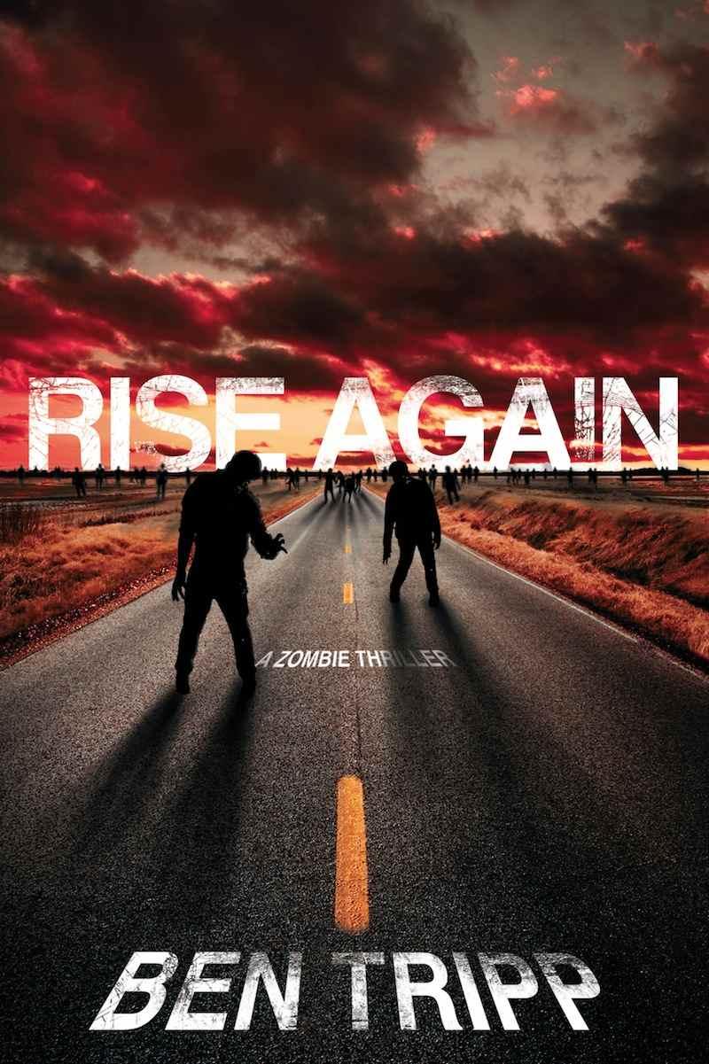 Rise Again cover