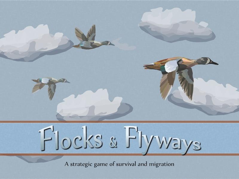 Flocks & Flyways box art