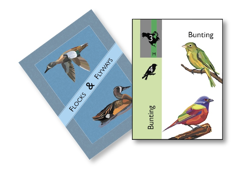 Flocks & Flyways card art