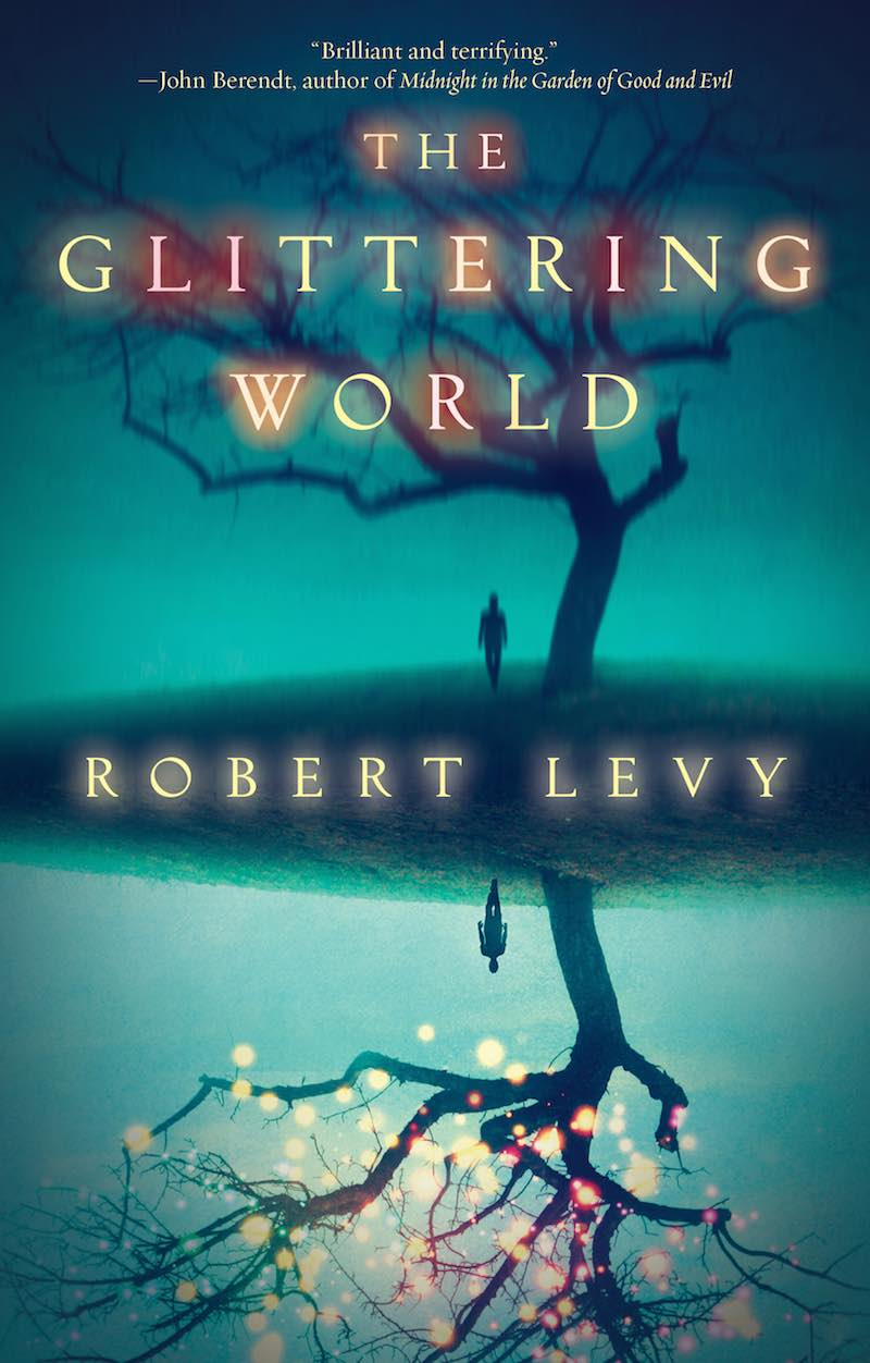 Robert Levy The Glittering World cover