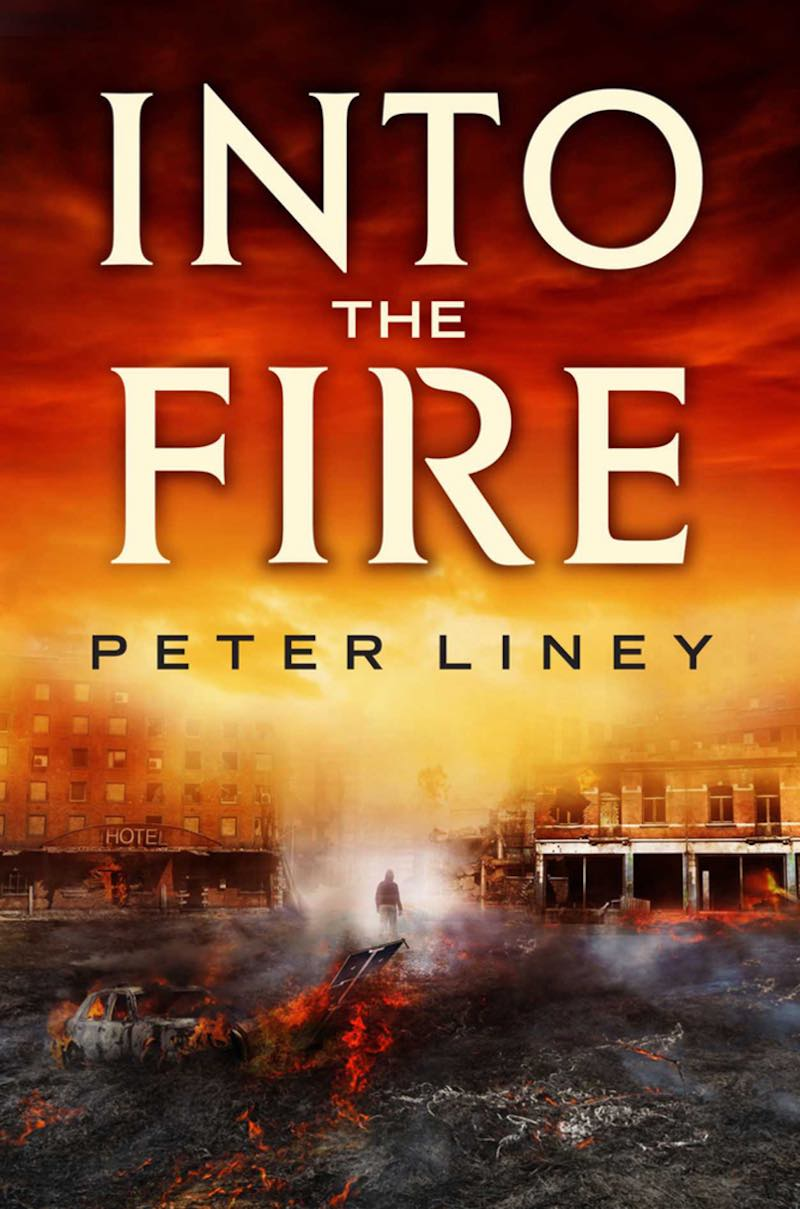 Peter Liney The Detainee Into The Fire In Constant Fear ITF cover