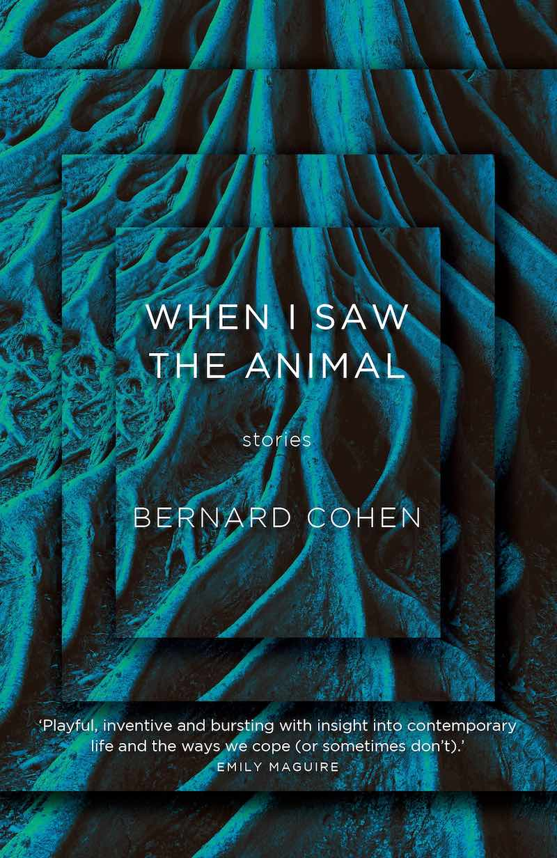 Bernard Cohen When I Saw The Animal